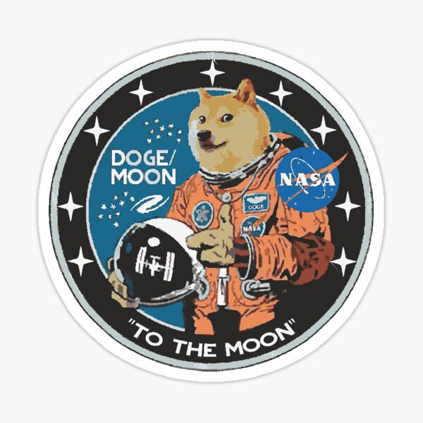 Dogecoin To The Moon HODL ON ,we're going to the moon loser cryptocurrency  Sticker