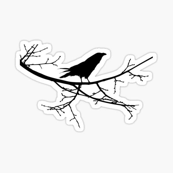 Raven On a Branch - Teal Sky Sticker