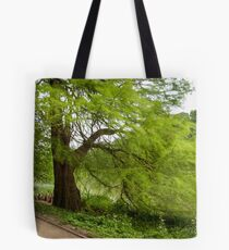 Two monumental swamp cypresses Tote Bag