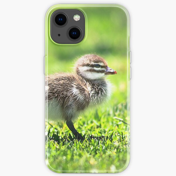 Yanchep Ducklings iPhone Soft Case