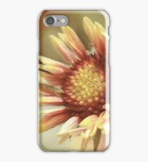 Gaillardia iPhone Case/Skin