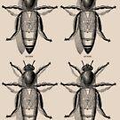 QUEEN BEES by rule30