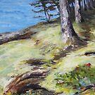 Seaside Mayne Island  by TerrillWelch