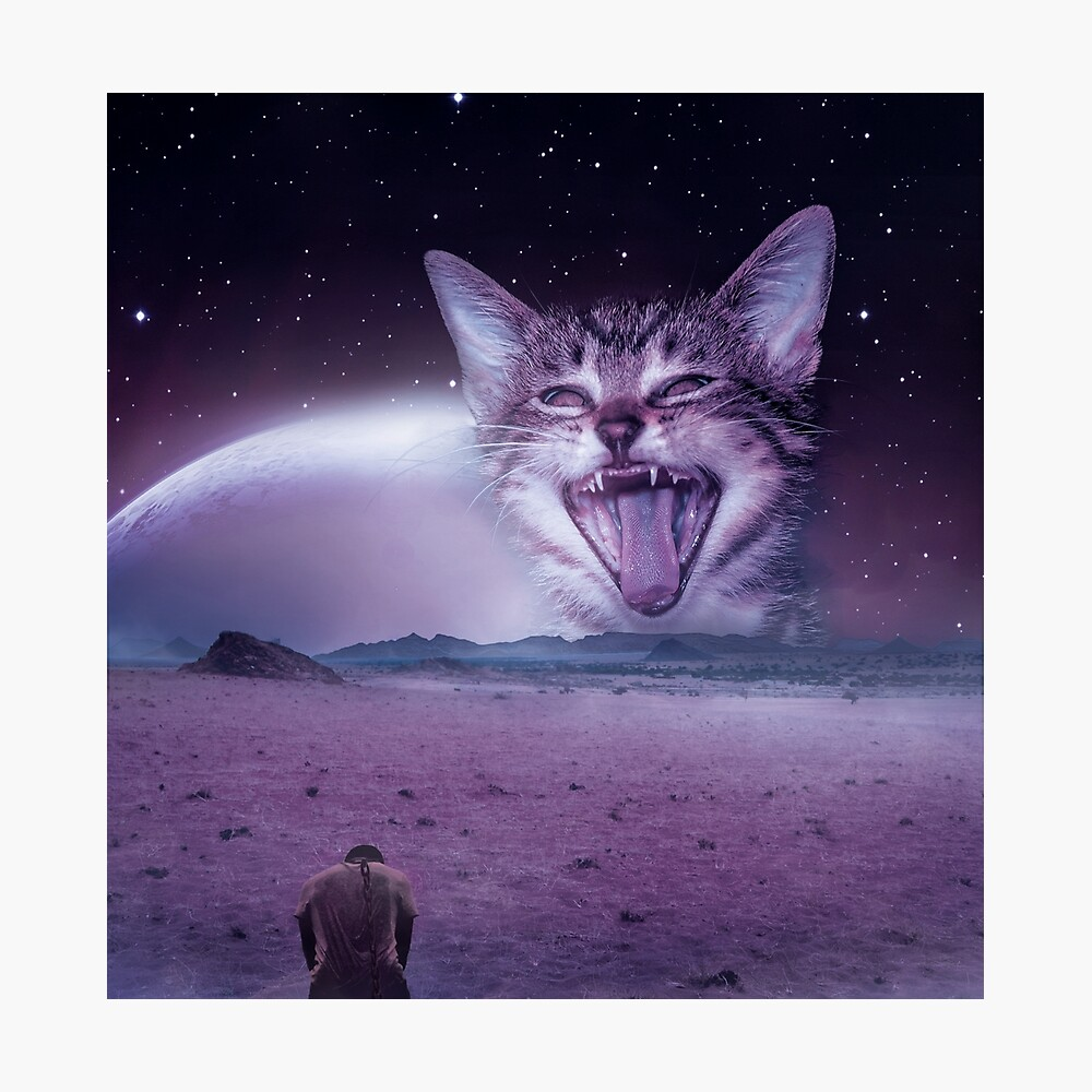 Planet Of The Cats Photographic Print