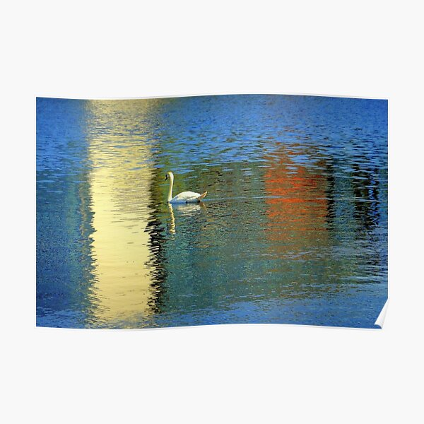 Ship Canal glider Poster