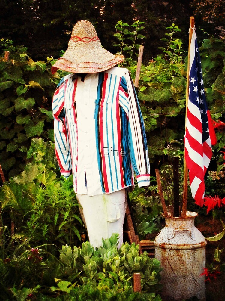The patriotic scare crow by Bine