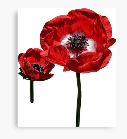 Poppy Mother and Child Canvas Print
