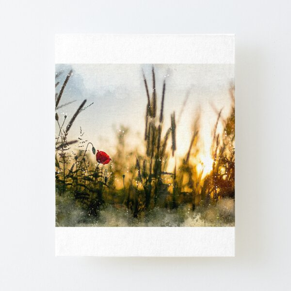 A small magical world painted Canvas Mounted Print