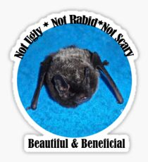 Beautiful And Beneficial Sticker