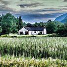 White Scottish Cottage - Oil Painting Effect by Glen Allen