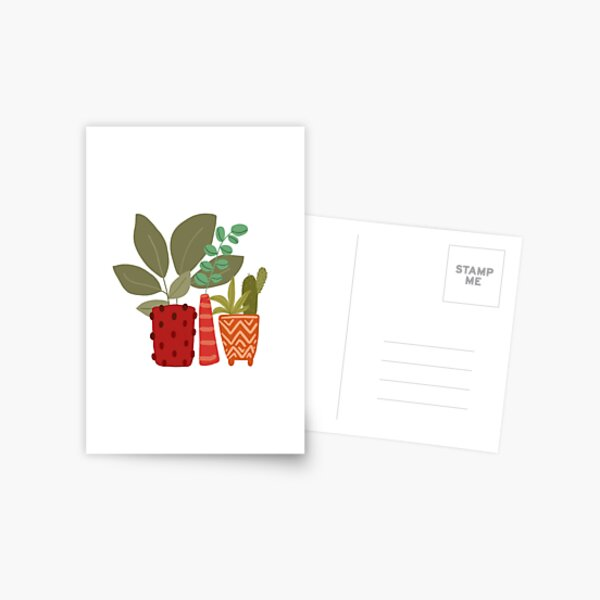Plants and succulents in funky pots  Postcard