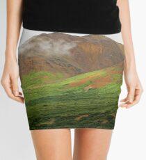 Sable Pass, Denali National Park Mini Skirt