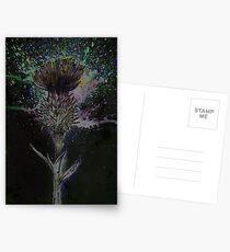 Thistle Postcards