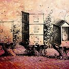 VINTAGE BEE HIVES by Tammera