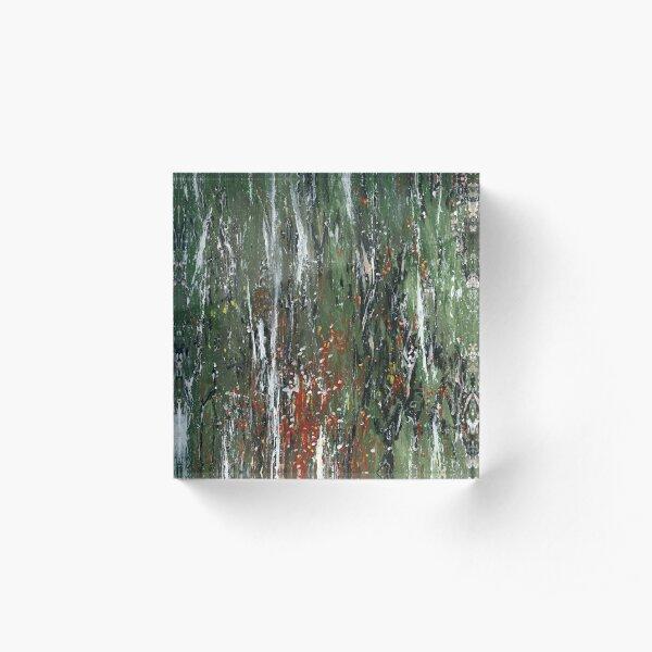 Moss and lichen on fencepost II/III Acrylic Block