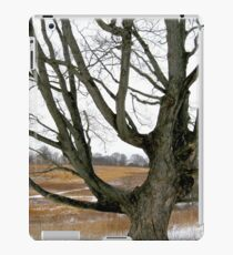Wyeth Country iPad Case/Skin