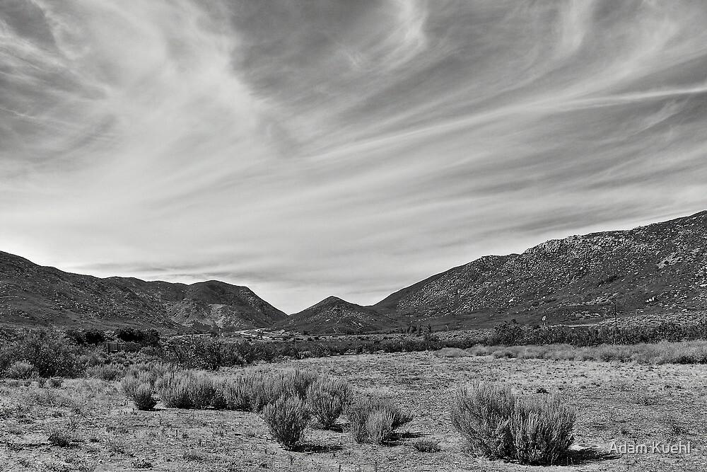 Arizona Landscape by Adam Kuehl