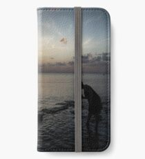 Sunset Beach Combing iPhone Wallet/Case/Skin