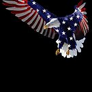 USA Eagle 1 by BluAlien