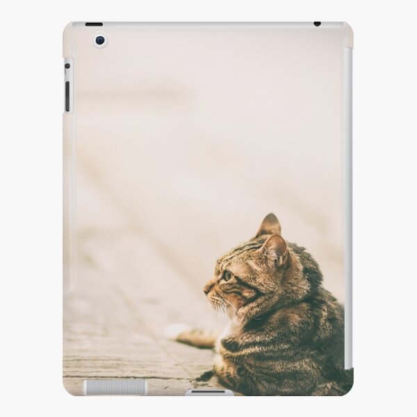 Two cats in an evening, Hong Kong iPad Snap Case