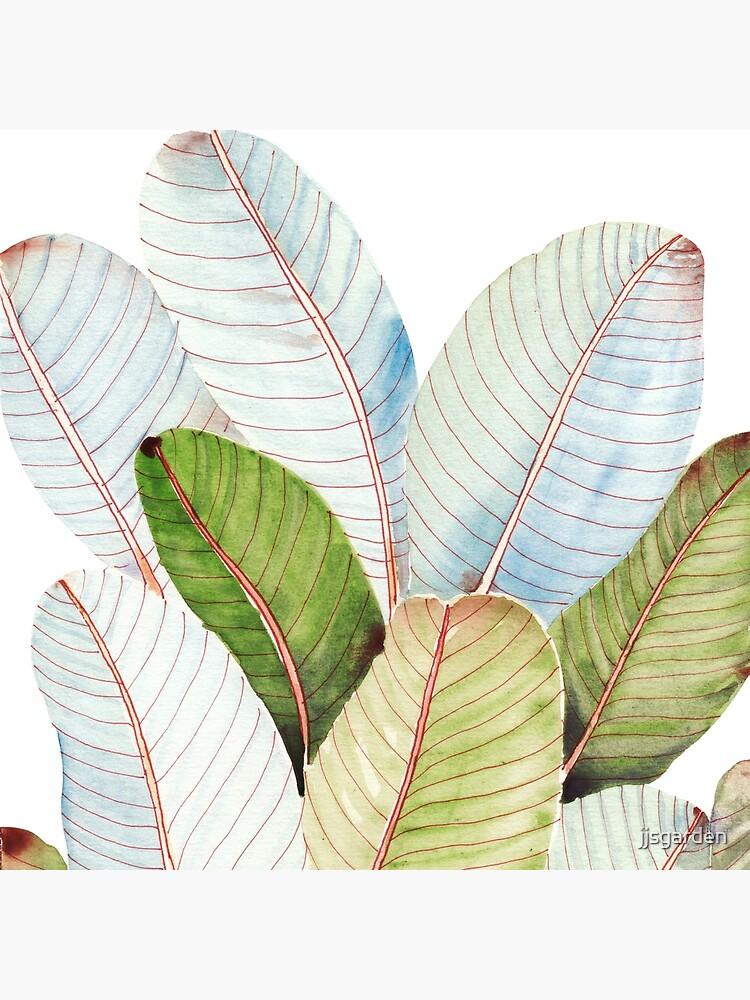 Banana Leaves| Tropical Leaves by jjsgarden