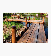 Japanese Garden Foot Bridge Photographic Print