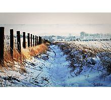 Snow Path Photographic Print