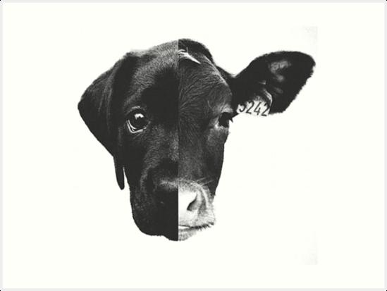 Tiergleichheit - (Schwarz-Weiß) von AbigailMinchew