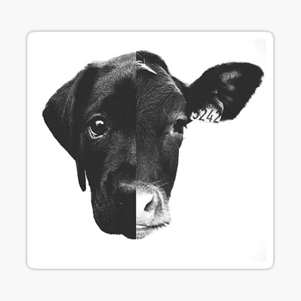 Animal Equality - (Black & White) Sticker