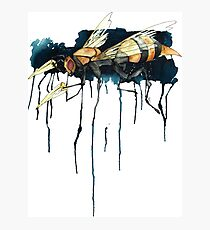 Bee With Drills Photographic Print