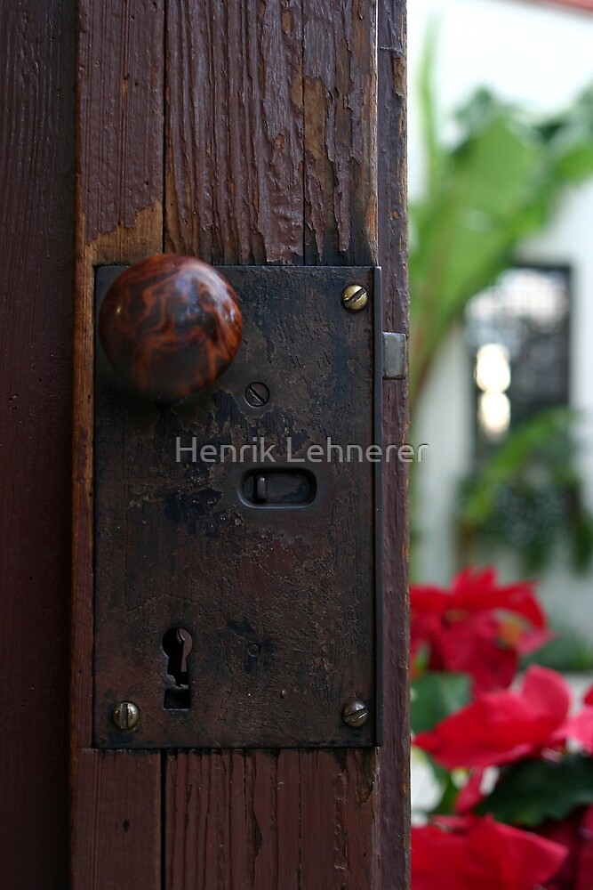 Door by Henrik Lehnerer