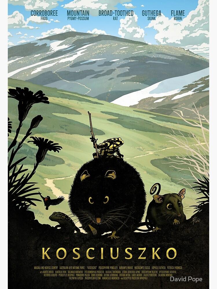 The summit track - Kosciuszko poster series, #1 by hinze