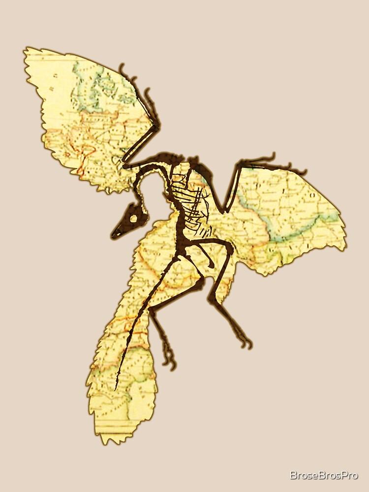 Archaeopteryx  by BroseBrosPro
