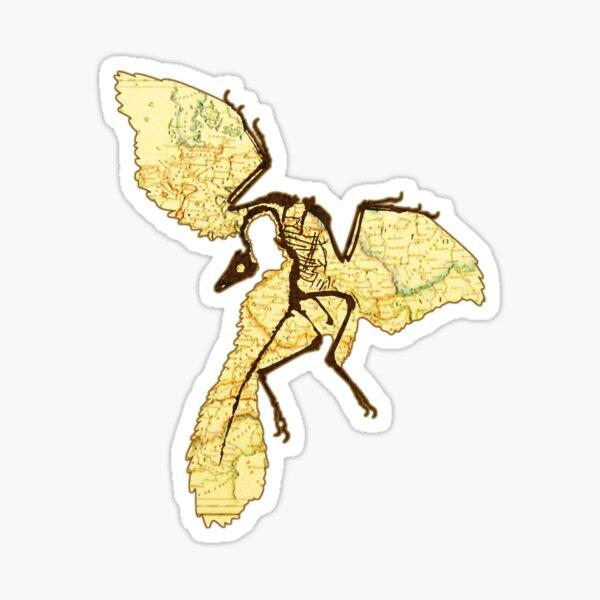 Archaeopteryx  Sticker