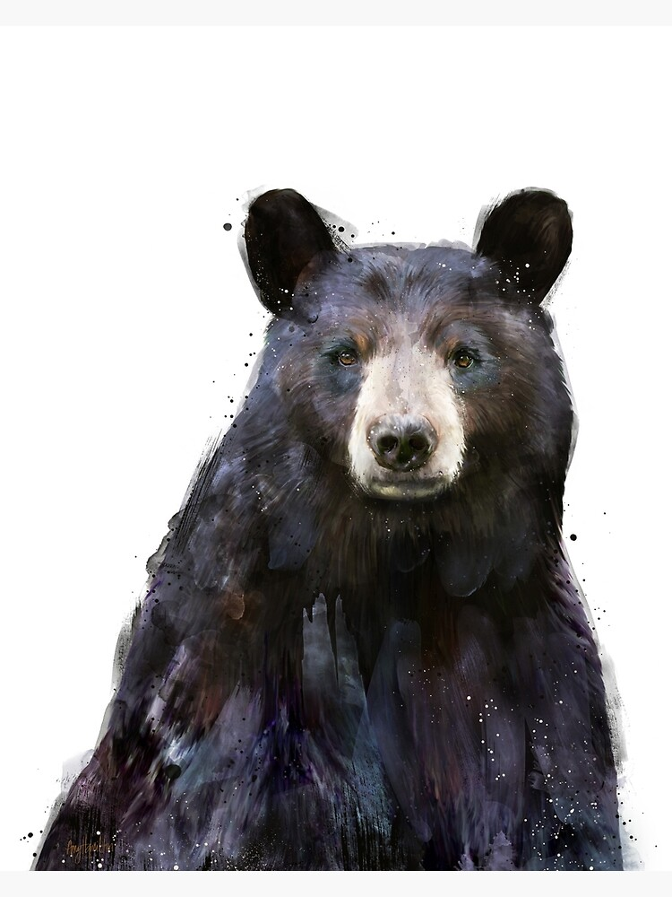 Black Bear by AmyHamilton