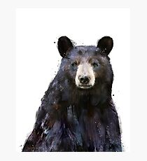 Black Bear Photographic Print