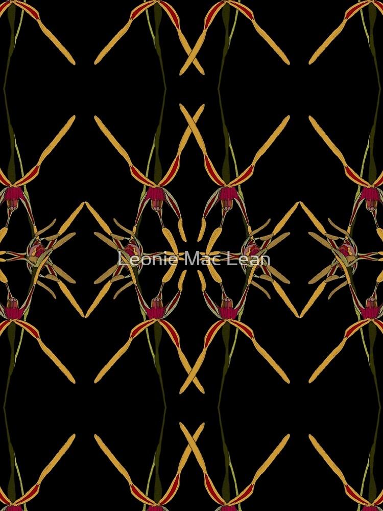 Reaching Spider Orchid Mirror Design Western Australia by yallmia