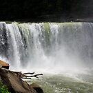 Cumberland falls by Don Rankin