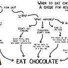 When to eat chocolate a guide for researchers by ErrantScience