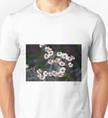 Small white flowers in the garden. T-Shirt