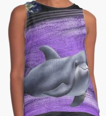 the dolphin Contrast Tank