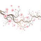 Sakura by Olga Altunina