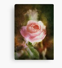 Computer generated old painting of a pink rose  Canvas Print