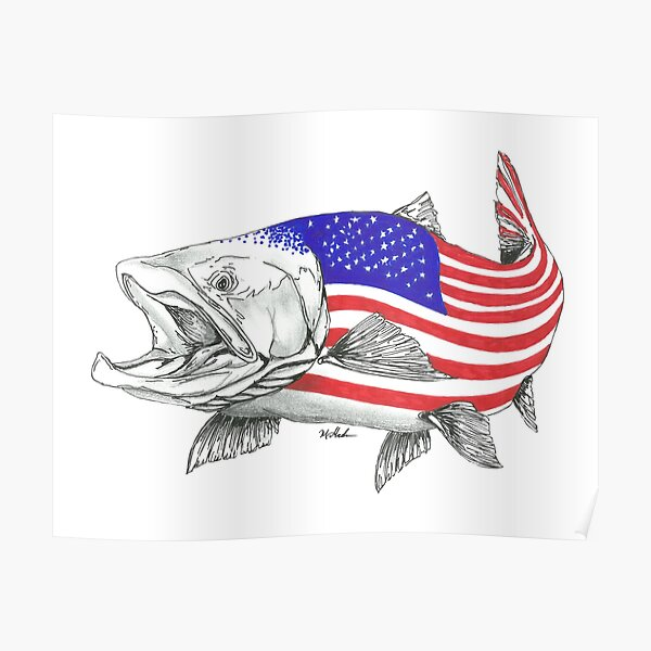American Steel Head Salmon Poster