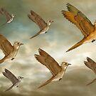 Flock of birds flying through the heavens by Paul Fleet