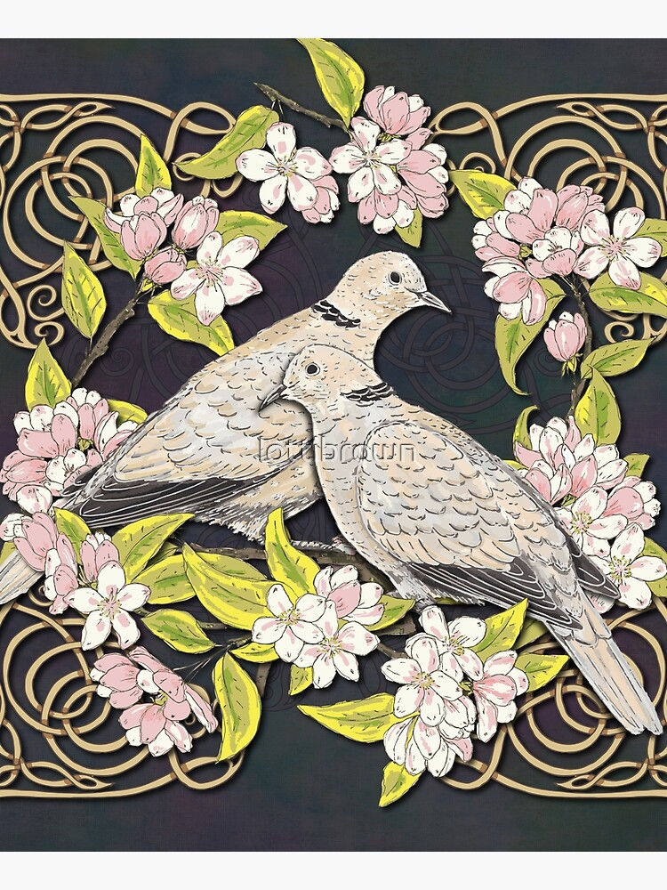Celtic Collared Doves in Blossom by lottibrown
