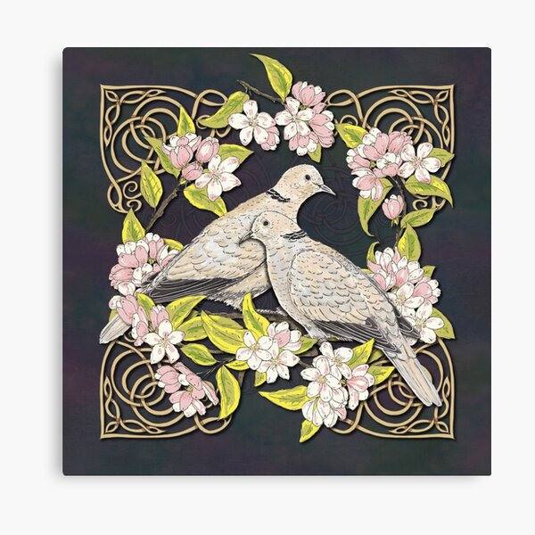 Celtic Collared Doves in Blossom Canvas Print