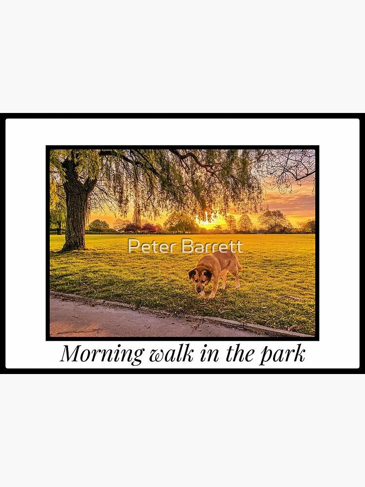 Morning walk in the park by hartrockets