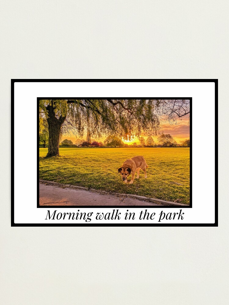 Alternate view of Morning walk in the park Photographic Print