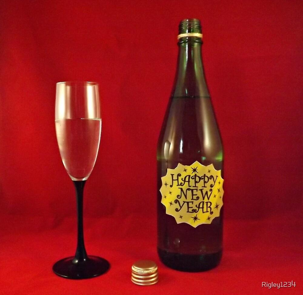 Happy New Year by Rigley1234